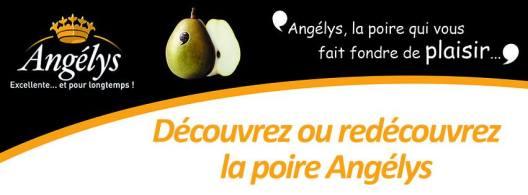 banniere Angelys