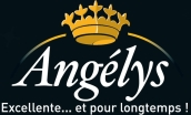 Logo Angéys noir