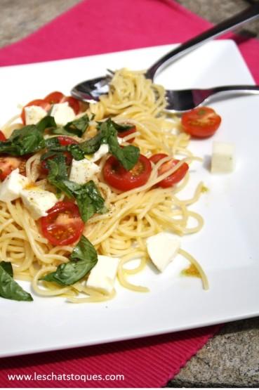 spaghetti tomates basilic zoom